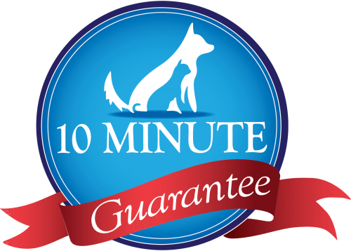 10 Minute Guarantee