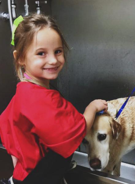 Girl washing a dog