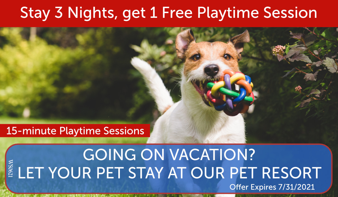 Stay 3 Nights at Resort and get 1 Free Playtime Session